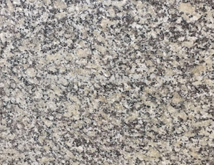 Cheap Chinese Natural Stone White G602 Granite Tiles