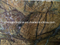 Bulk Stock Rainforest Brown Marble with Low Price